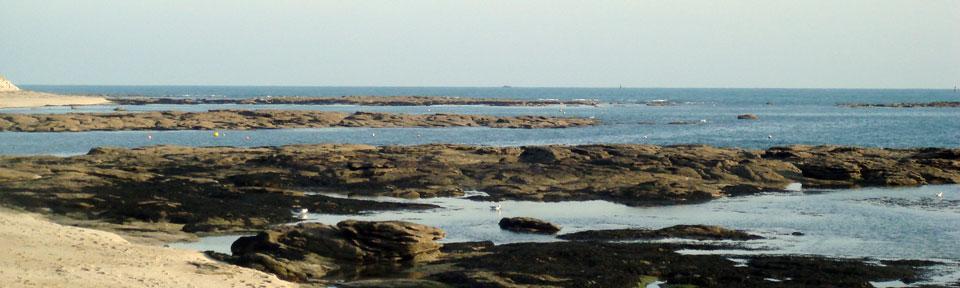 Les Pieds dans l'Herbe – Chambres d'hotes et gîtes – Rosporden – Finistère Bretagne - côte Finistère Sud